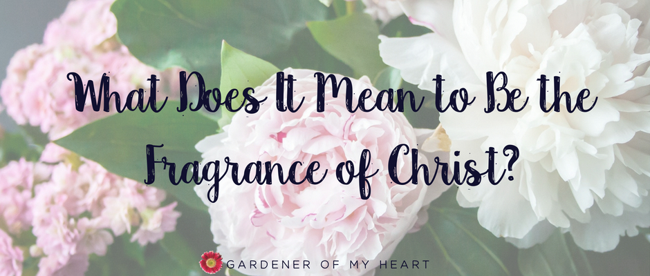 What Does It Mean to Be the Fragrance ofChrist?
